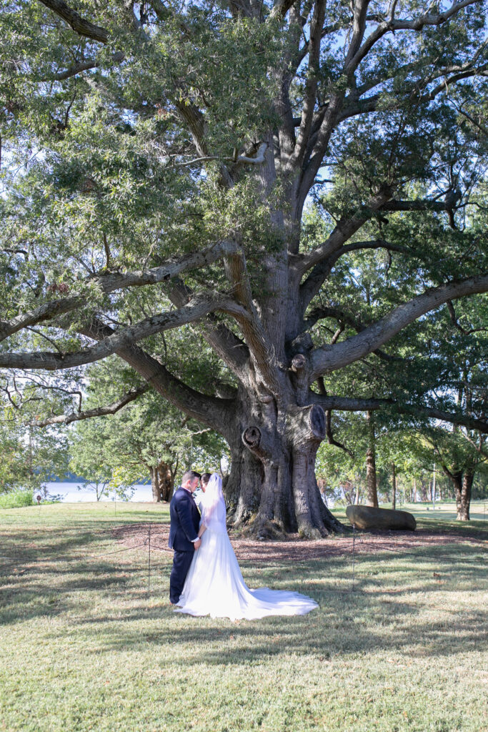 bride and groom kissing at tree